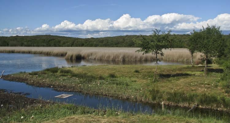 Vogelschutzreservat Palaud Aufmacher