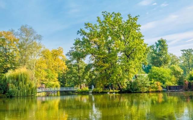 Grüne und harmonische Oase