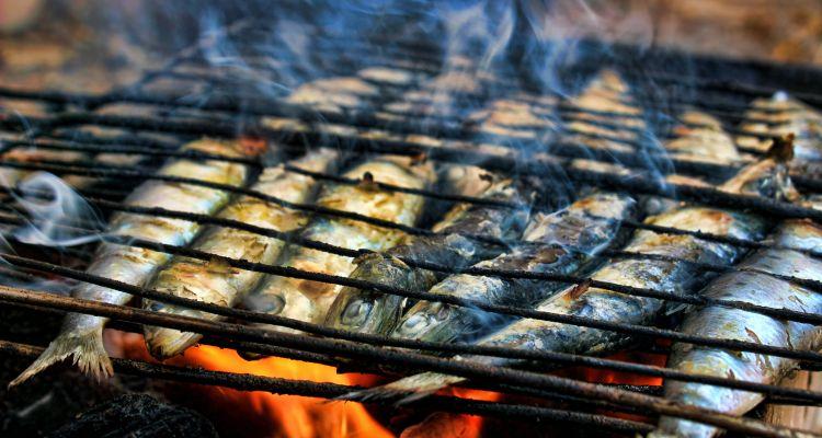 Insel Brač: Gastronomie