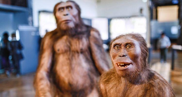 Museum der Neandertaler_Krapina_Samardžija