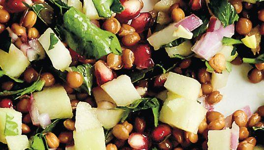 Rezept Linsensalat mit Sardellen