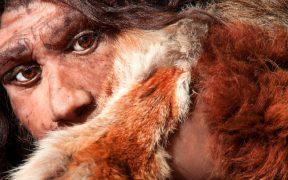 Museum der Neandertaler in KrapinaMuseum der Neandertaler in Krapina