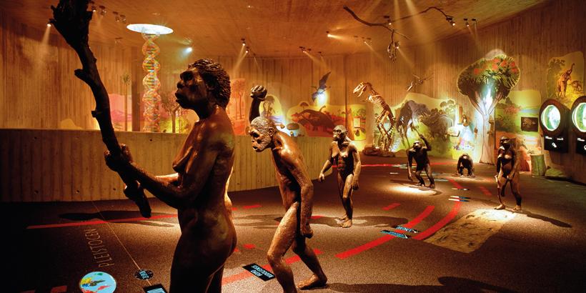 https://www.lust-auf-kroatien.de/wp-content/uploads/2019/07/Zagorje-Neanderthaler-Museum.jpg