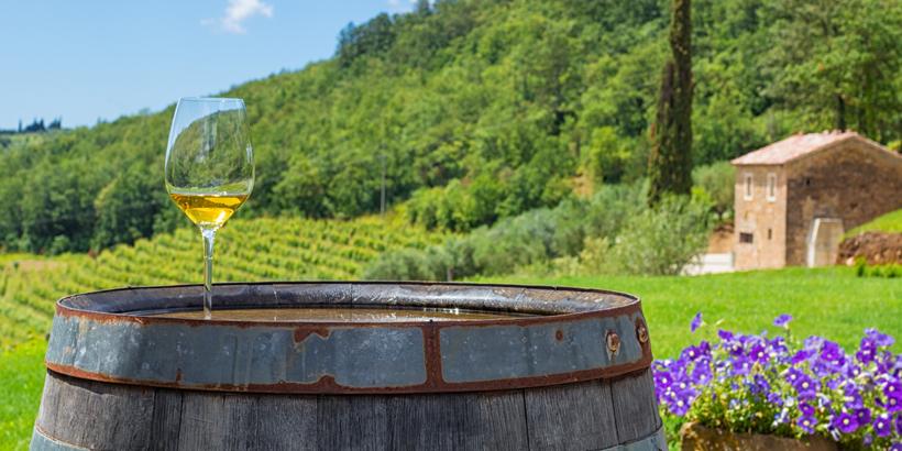 Istriens Weine glass of white wine on vineyard in Istria, Croatia