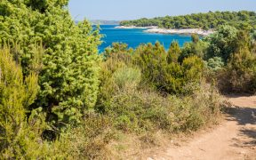Wandern am Gornji Kamenjak an der Südspitze Istriens