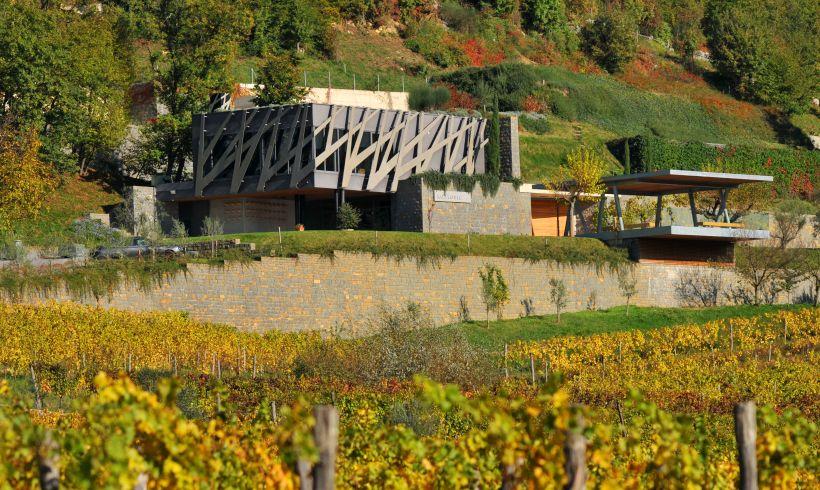Weingut Kozlovic Traubensorten Weinberge