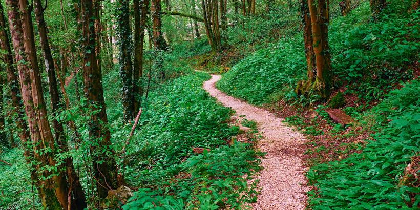 Trekkingrouten entlang der Schlucht von Pazin