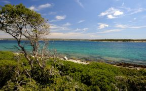 Mali Brijun - eine von 14 Inseln von Brijuni in der Adria