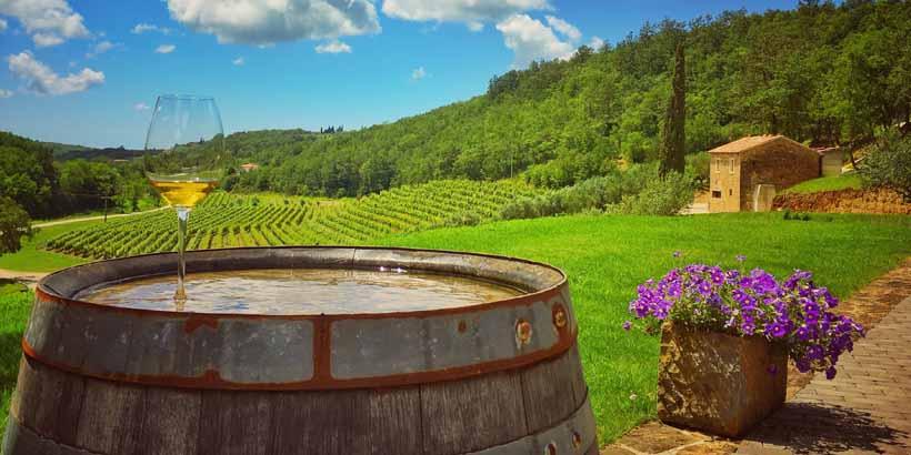 Weinverkostung in Momjan