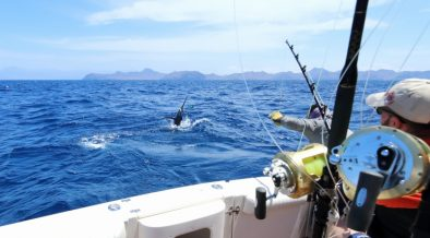Angler beim Fischen im Salzwasser - Angelschein für Kroatien - Angeln im Meer