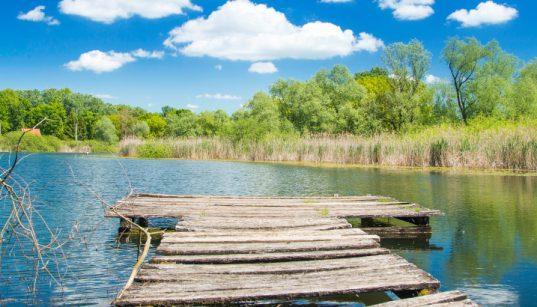 Steg in See Lonjsko Polje in Slawonien - Angeln in Slawonien - Fischfang