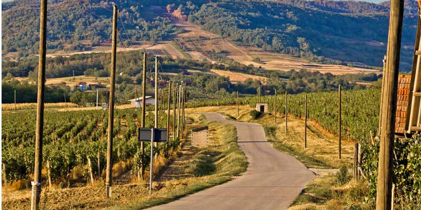 Weinrouten durch Istrien