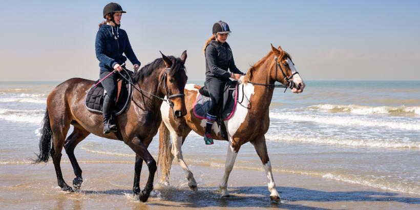 Reitschüler beim Reiten am Strand mit ihren Pferden
