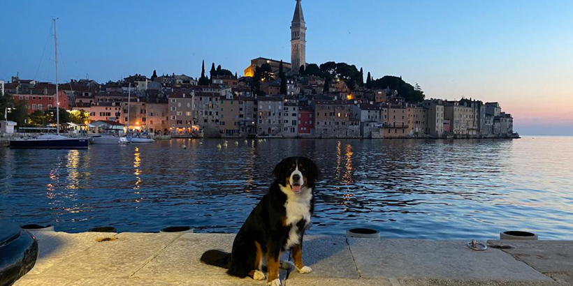 Urlaub 2020 Kroatien Rovinj