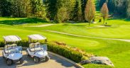 Golfcarts am Golfplatz mit Waldstücken - Split Golf