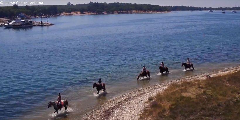 Ausflug mit Pferden am Wasser mit dem Horse Centar Lanterna