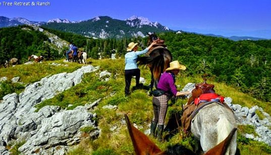 Ausritt der Linden Tree Retreat & Ranch im Velebit Gebirge