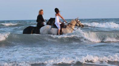 Zwei Frauen und ihre Pferde im Meer - Reiten in Istrien