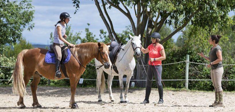 Gruppe von Reiterinnen mit ihren Pferden bei einer Unterrichtsstunde zum Reiten im Mittleren Kroatien