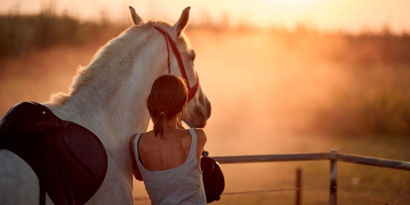 Mädchen nach dem Reiten in Dalmatien mit ihrem Pferd bei Sonnenuntergang