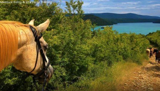Pferde mit Aussicht beim Reiten in Labin - Liska Adventure Riding & Istra Horse Trekking
