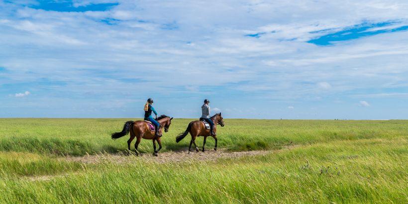 Pferdeliebhaber beim Offroad-Ausritt auf grüner Wiese - Reiten in Slawonien