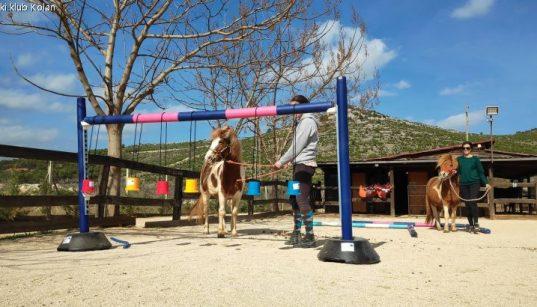 Pony beim Geschicklichkeitstraining im Konjički Klub Kolan - Happy Horse Farm in Šibenik