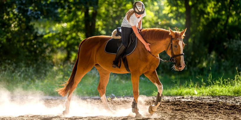 Reiterin und ihr Pferd beim Reiten in Karlovac - Lika