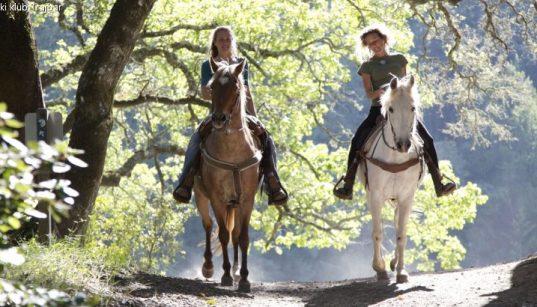 Zwei Reiterinnen auf ihren Pferden vom Konjički klub Trajbar unterwegs im von der Sonne durchfluteten Wald