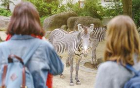 Zoo Osijek
