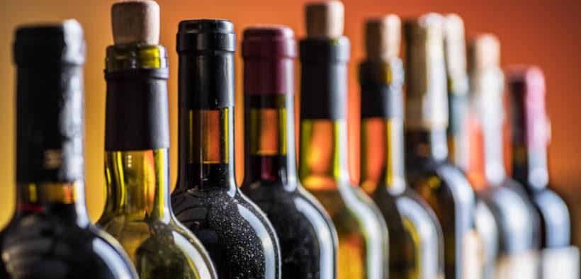 Wein erleben bei Vukovar