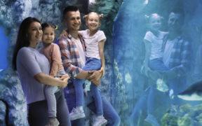 Aquarium Crikvenica